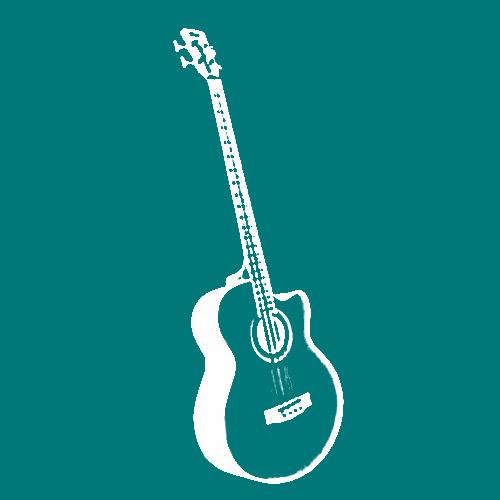 plättchen zum spielen von zupfinstrumenten